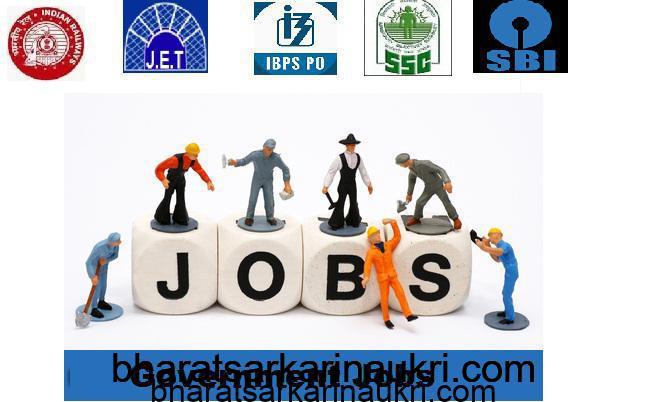 government jobs, govt jobs notification, govt job, Government Job, govt jobs